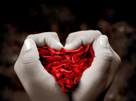 Հարցեր հոգեբանին. «Ինչպե՞ս տարբերել սերը կապվածությունից»: Մաս 3-րդ